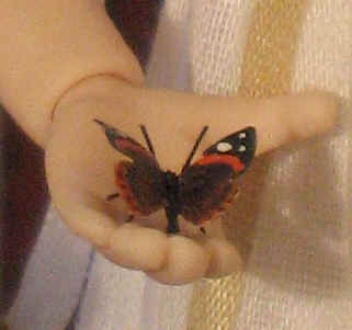 A close up of the Red Admiral butterfly caught by Ambrose in the churchyard.